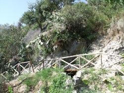 Giardini della sorgente di nitrodi